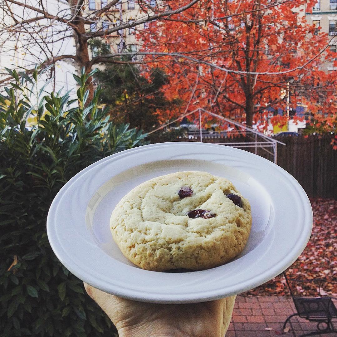 Questa è la dimensione dei biscotti che mangio qui a colazione praticamente 1 biscotto ammerrigano=1 pacco di biscotti de noialtri. Questi li chiamano SCONES. Nel senso, mi pare di capire, che sono SCONESigliati a chi ci tiene alla linea. #ciaomagre #scones #newyork #newyorkcity #veganinnewyork #veganlife #veganism #notsohealty #veganism #vegan #veganbreakfast #nycbreakfast #newyorkbreakfast
